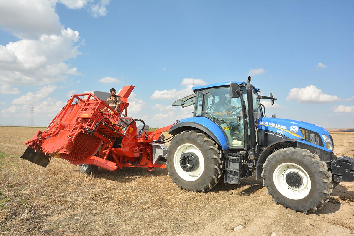 T.D. 2900 Pumpkin Seed Extracting Machine
