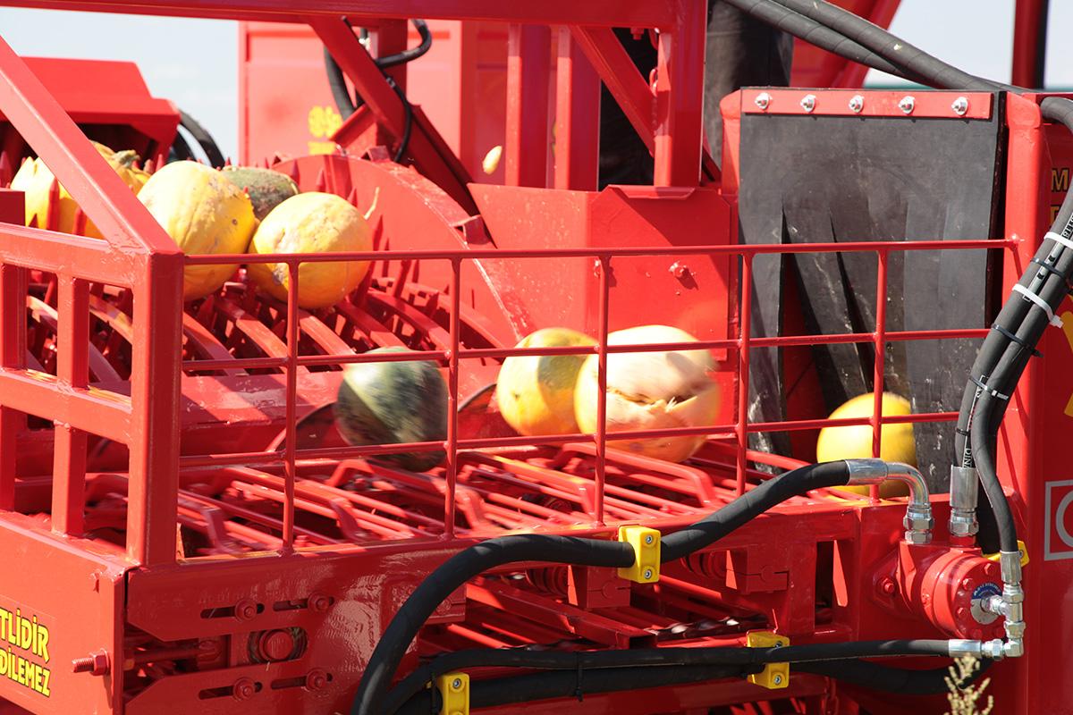 T.D. 2900 Die Maschine für die Entkernung der Kürbisse