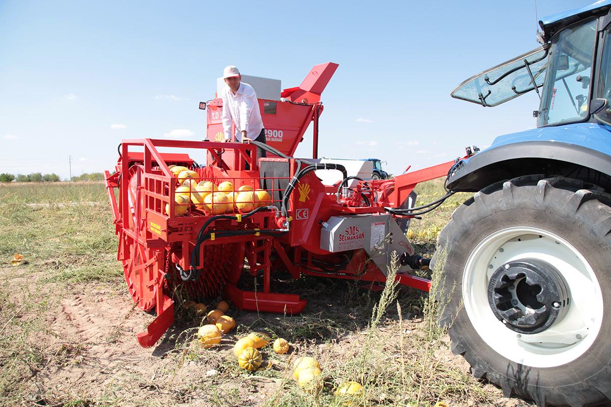 Машина для выделения семян тыквы T.D. 2900e